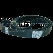 RSP70276203P PRIMUS Courroie sèche-Linge 2391PJ12