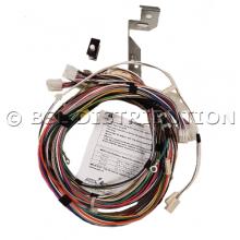 RSP806512 IPSO Kit de remplacement balourd 8 KG